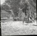 Rebuilding the bridge over Virgin River at Birch Creek. ; ZION Museum and Archives Image 008 13 011 ; ZION 14779 (7dd69da08ff54b0d8819a5e29a4482c7).tif