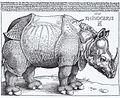 Rhinocerus woodcut (1515) Albrecht Dürer.jpg