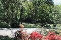 Rhododendronpark Bremen 20090513 227.JPG