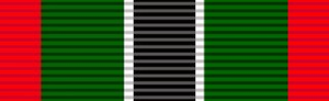 Merit Medal in Bronze - Operational Medal for Southern Africa
