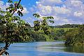 Rio Araguari.jpg