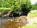 River Caerfanell at Abercynafon - geograph.org.uk - 609764.jpg