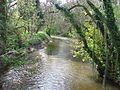 River Ely north of St George's - geograph.org.uk - 2381306.jpg