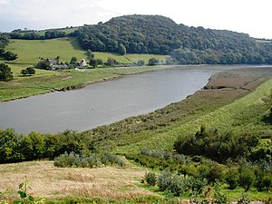 River Tamar - The Tamar near Bohetherick