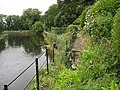 River bank damage - geograph.org.uk - 1462298.jpg