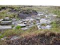Rocks under the peat layer, Saddleworth - geograph.org.uk - 486273.jpg