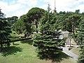 Rome (29269650).jpg