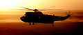 Royal Navy Sea King Mk 4 Helicopters from 845 and 846 Naval Air Squadrons in Afghanistan MOD 45153246.jpg