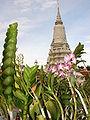 Royal Palace - Phnom Penh - Cambodia.JPG