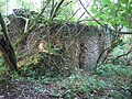 Ruin in the woods - geograph.org.uk - 255372.jpg