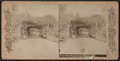 Rustic Arbor, Prospect Park, Brooklyn, N.Y, from Robert N. Dennis collection of stereoscopic views.png