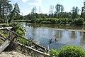 Rzeka Liwiec - panoramio (1).jpg