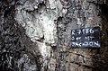 S of Mt Jackson tuffisite dyke in gabbro breccia (cu).jpg