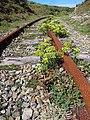Saint-Pierre-Quiberon - Kergroix - 20120827 (3).jpg