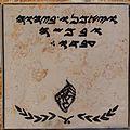 Samaritan Passover sacrifice site IMG 2149.JPG