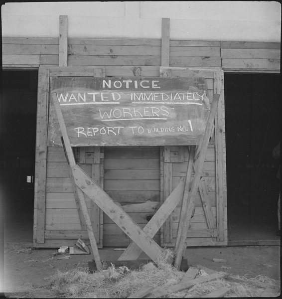"San Bruno, California. ""Help Wanted"" sign displayed for newly arrived evacuees. There was much wo . . . - NARA - 537668"