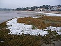 Sandbanks, harbour shore after big freeze - geograph.org.uk - 1114586.jpg