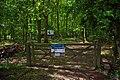 Sandlay and Moat Woods Reserve - geograph.org.uk - 1305840.jpg
