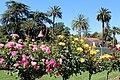 Santa Clara, CA USA - Santa Clara University, Mission Santa Clara de Asis - panoramio (25).jpg