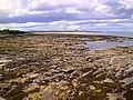 Seahouses and Bamburgh Castle - geograph.org.uk - 116342.jpg