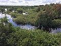 Sebangau River 08.jpg
