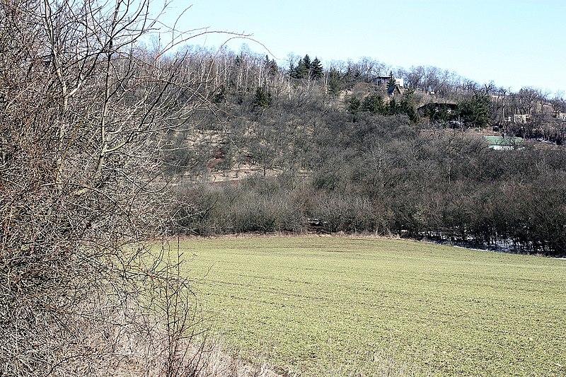File:Seeburg (Mansfelder Land), nördlich des Süßen Sees.jpg