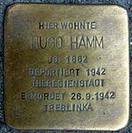 Hugo Hamm