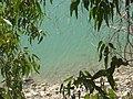 Sendero-embalse-de-Bornos P1420644.jpg