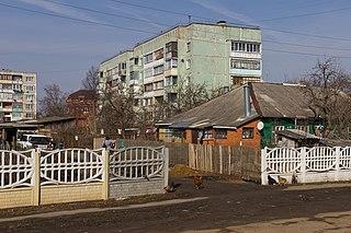 Serebryanye Prudy human settlement in Russia