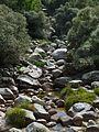 Serra da Estrela (21978669064).jpg
