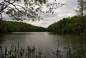 Shelekhov Lake.jpg