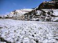 Shiraz - panoramio (37).jpg