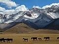 Silk road kyrgystan svr.jpg