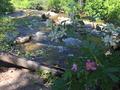 Skalkaho Creek at Centennial Grove July 7, 2017.png