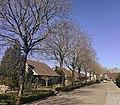 Slangenburgstraat, Doornenburg (Thornsburg).jpg