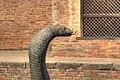 Snake 4040 1 2 tonemapped (38685663434).jpg