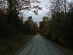 Snake Mountain Road Weybridge.jpg