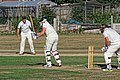 Southwater CC v. Chichester Priory Park CC at Southwater, West Sussex, England 095.jpg