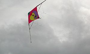 Sport kite - Two line sport kite shown from below. The control lines are visible from this vantage point.