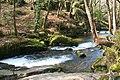 St Neot, Golitha Falls - geograph.org.uk - 139639.jpg