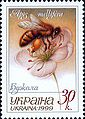 Stamp of Ukraine s254.jpg