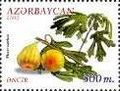 Stamps of Azerbaijan, 2000-574.jpg