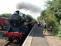 Steam engine and train, Ferry Meadows station - geograph.org.uk - 966826.jpg