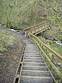 Steps to the bridge - geograph.org.uk - 664380.jpg