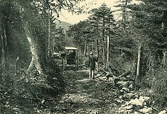 Slide Mountain (Ulster County, New York) - The bridle trail up Slide Mountain, photo by S.R. Stoddard, about 1900