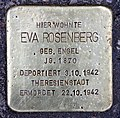 Stolperstein Grunewaldstr 12 (Schön) Eva Rosenberg.jpg