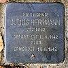 Stolperstein Im Amseltal 29 (Frohn) Julius Herrmann.jpg