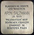 Stumbling block for Aron Salzmann (Blaubach 80)