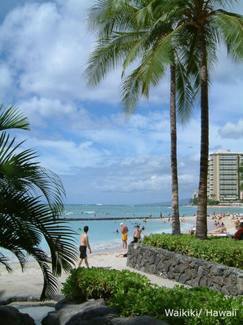 Waikiki Beach, Ohau, Hawaii, USA