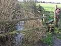 Stream and Stile - geograph.org.uk - 326812.jpg